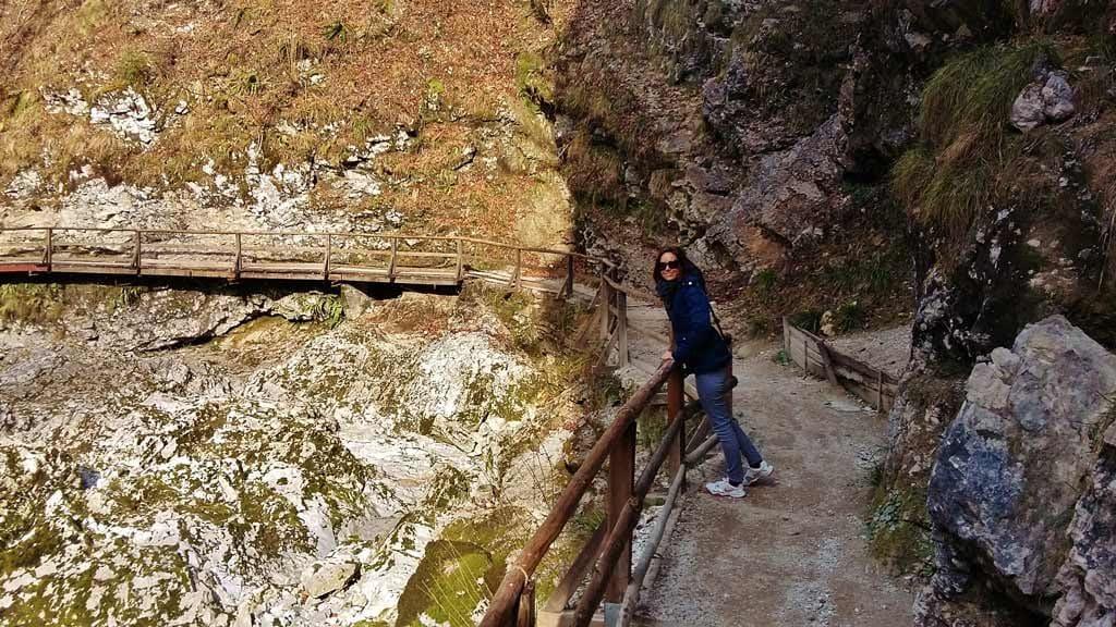 Le pareti rocciose della gola di Vintgar