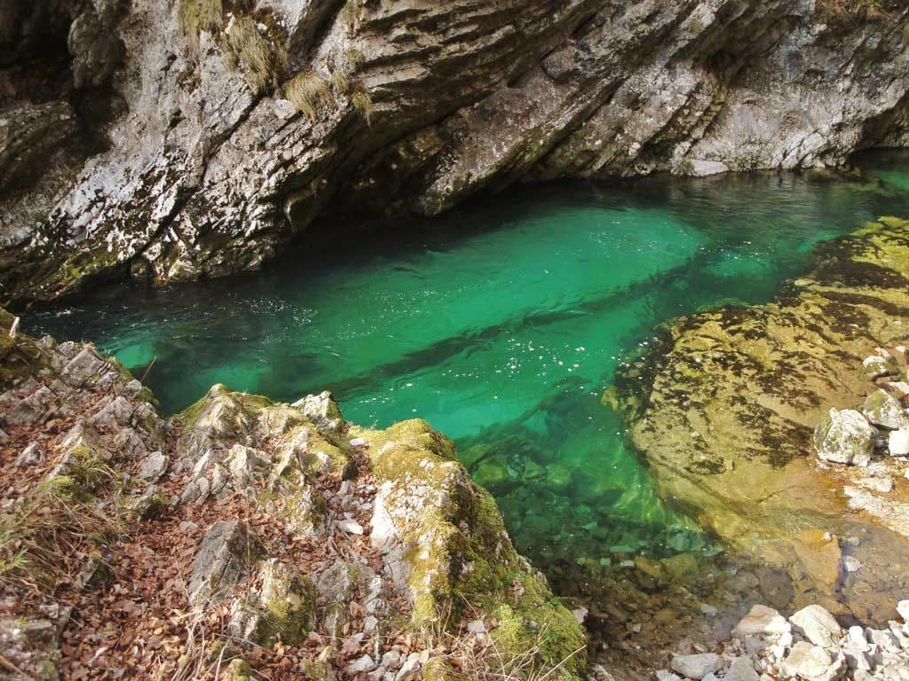 Pozze d'acqua verde smeraldo alla gola di Vintgar