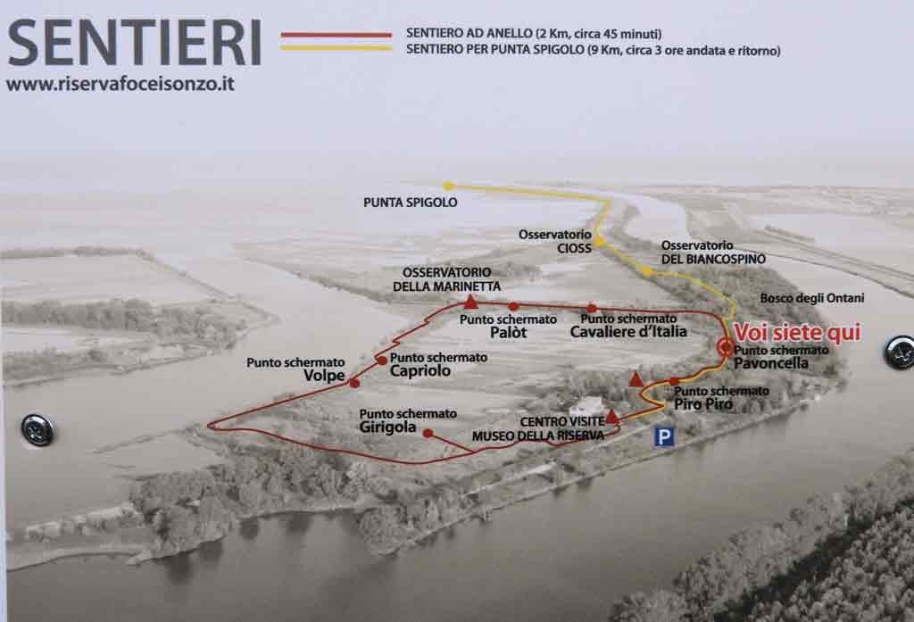 I sentieri della Riserva Naturale Foce dell'Isonzo